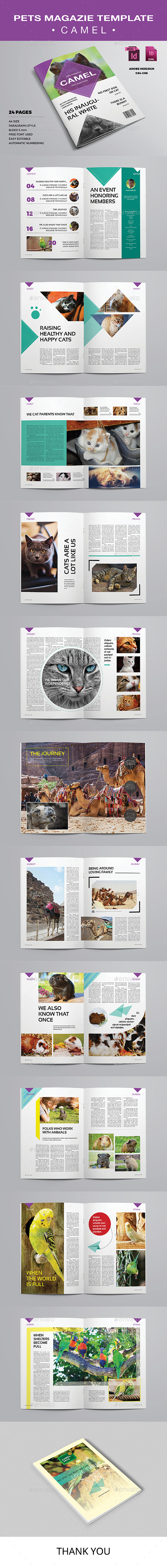 Pets Magazine Template - Camel - Magazines Print Templates