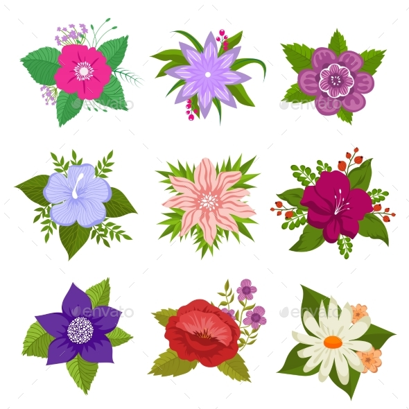 Decorative Nature Flower Vector Set - Objects Vectors