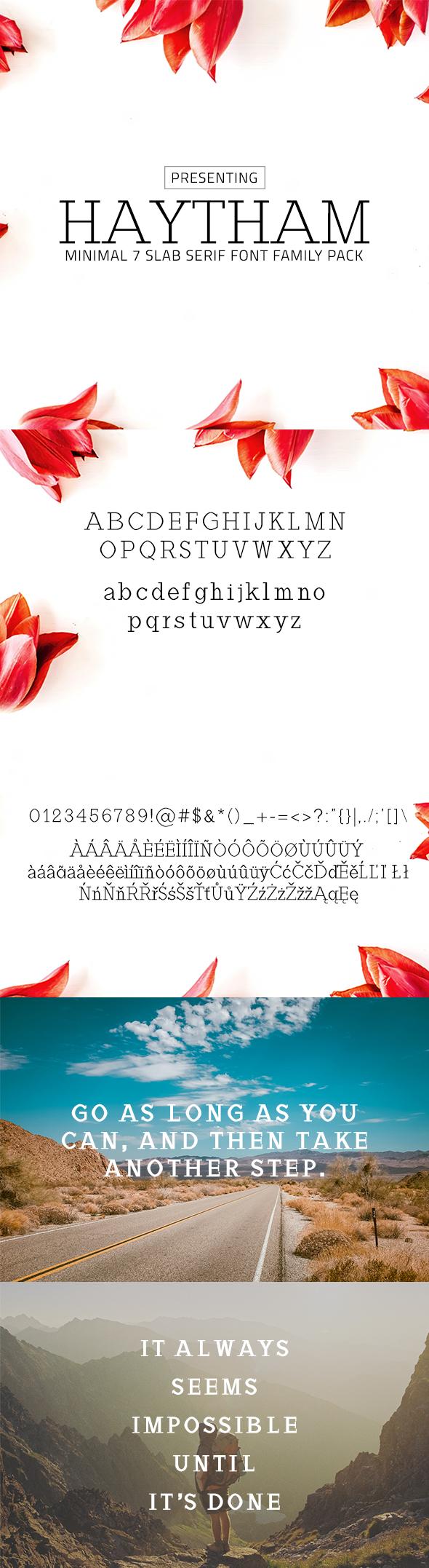 Haytham Minimal Slab Serif Typeface - Serif Fonts