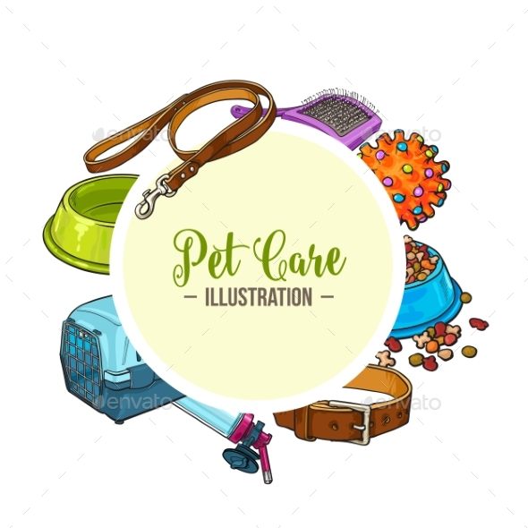 Veterinary Banner of Pet Accessories - Animals Characters