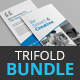 Trifold Brochure Bundle - 3 in 1 - GraphicRiver Item for Sale