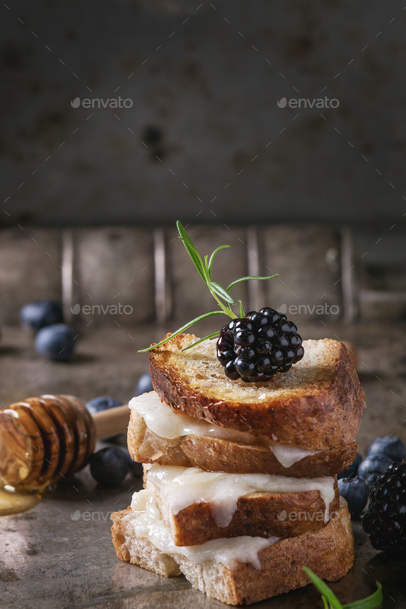 Sandwich with goat cheese and berries - Stock Photo - Images