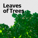 Leaves of Trees 3 - VideoHive Item for Sale