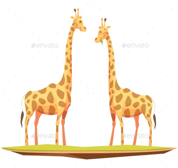Giraffes Couple Animals Composition - Animals Characters