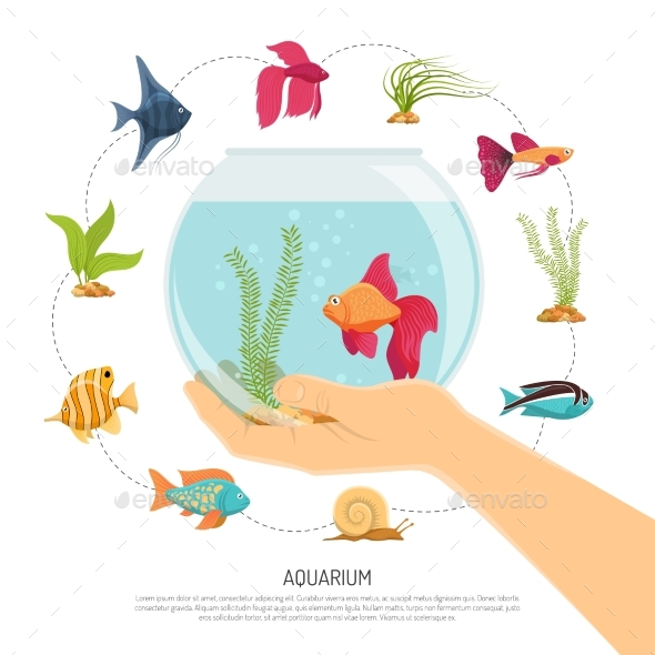 Fish Bowl Hand Composition - Animals Characters