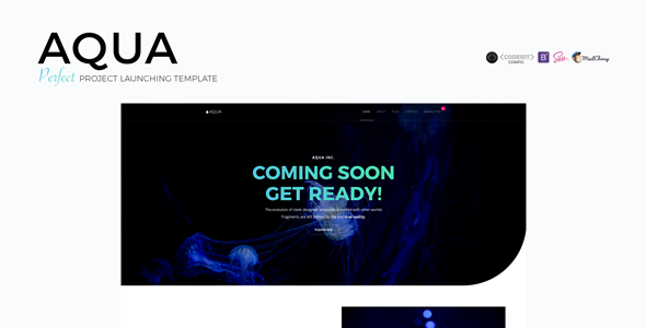 AQUA – Perfect Project Launching Template