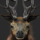 Stag With Hair 3D Model - 3DOcean Item for Sale