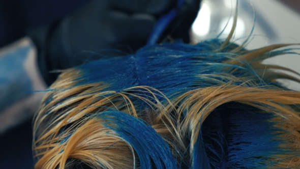 VideoHive Professional Hairdresser Dyeing Hair of Her Client Blue Hair Color 19995415