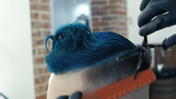 VideoHive Barber Cutting Hair with Scissors and Comb a Client Is a Young Caucasian Man Bright Blue Hair 19995431