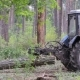 Tractor Driven Felled Trees in the Forest - VideoHive Item for Sale