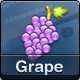Grape – Professional & Flexible Admin Template Nulled
