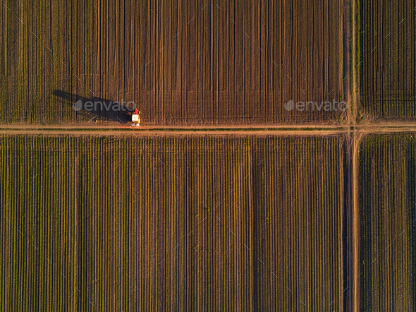Aerial view of tractor in cultivated corn maize crop field - Stock Photo - Images