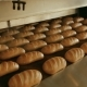 Loaf of Bread on the Production Line in the Bakery - VideoHive Item for Sale