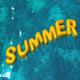 Summer - VideoHive Item for Sale