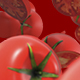 Fresh Tomatoes - VideoHive Item for Sale