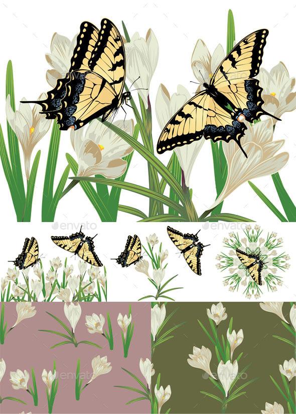 White Crocus Flowers - Flowers & Plants Nature