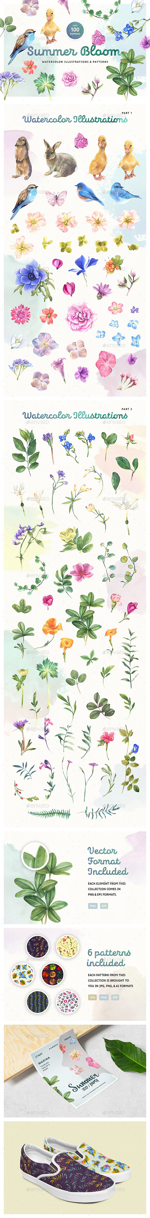 Summer Bloom Watercolor Set - Illustrations Graphics