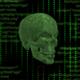 Hacking Skull Head