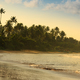 beautiful tropical beach with palm trees in the morning - PhotoDune Item for Sale