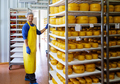 Handsome cheesemaker is checking cheeses in his workshop storage. - PhotoDune Item for Sale