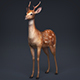 Low Poly Realistic Deer
