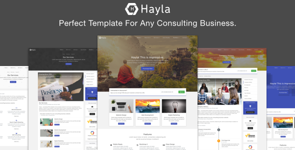 Hayla - Consulting Business Website Temlate