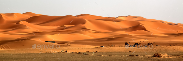 Stunning sand dunes of Merzouga - Stock Photo - Images