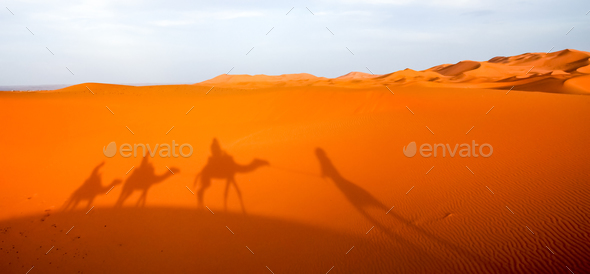 Shadow of a caravan on sand dunes - Stock Photo - Images