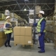 Warehouse Workers Check Merchandise