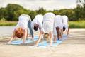 group of people making yoga dog pose outdoors