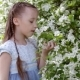 Cute Little Girl in Blooming Apple Tree Garden at Spring - VideoHive Item for Sale