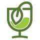 Green Tea - GraphicRiver Item for Sale