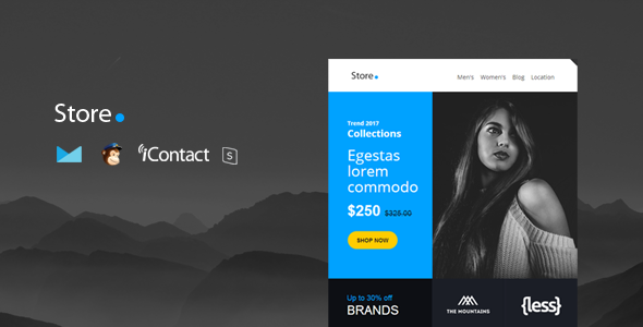 Store Mail - Responsive E-mail Template + Online Access by williamdavidoff