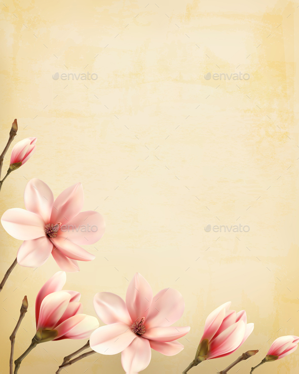 Nature Spring Background with Magnolia Branches - Flowers & Plants Nature