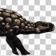 Dinosaur - Ankylosaurus - Run and Walk - VideoHive Item for Sale