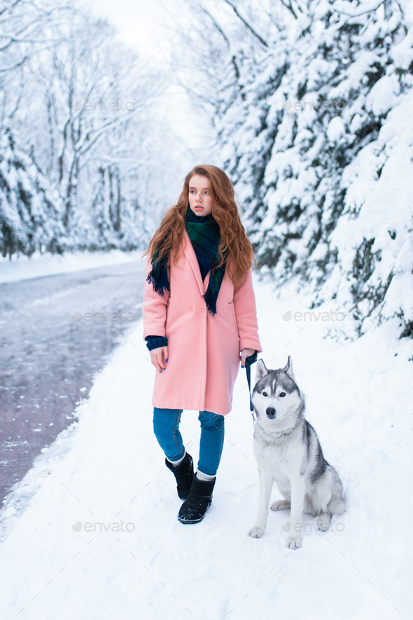 Siberian husky sitting near young woman - Stock Photo - Images