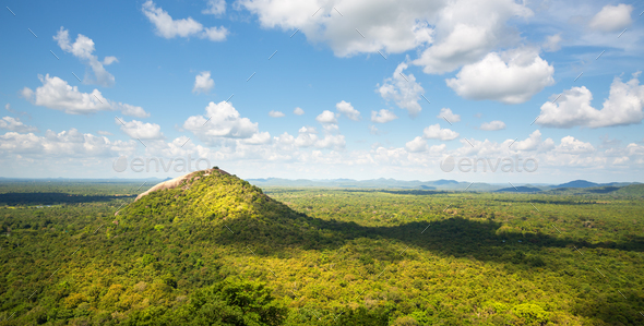 Scenic green valley and tea mountains, Ceylon - Stock Photo - Images