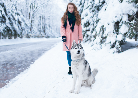 Young woman walks in the park with siberian husky - Stock Photo - Images