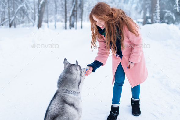 Pretty woman with playful husky dog - Stock Photo - Images