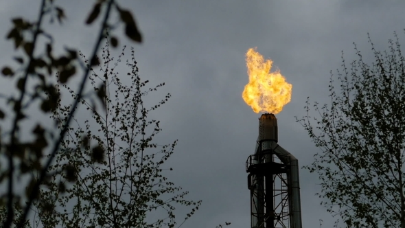 VideoHive Burning Torch at the Refinery Among the Trees 20042564