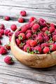 Harvest ripe raspberries