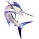 Marlin - GraphicRiver Item for Sale