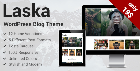 Laska - Stylish WordPress Blog Theme