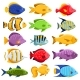 Colorful Reef Tropical Fish Set - GraphicRiver Item for Sale