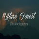 NatureForest Script - GraphicRiver Item for Sale