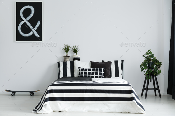 Skateboard and plants in bedroom - Stock Photo - Images