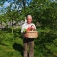The Old Man in the Garden Is Holding a Basket with Ripe Vegetables.