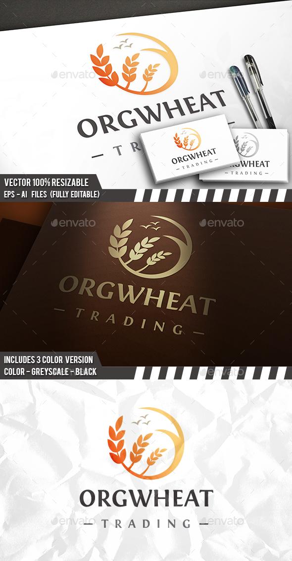 Wheat Sun Circle Logo - 3d Abstract
