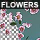 Flowers Falling Loop Background Nulled