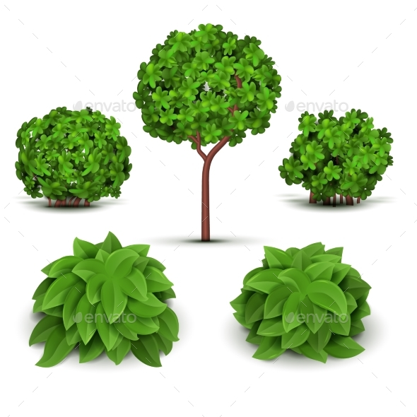 Garden Bush With Green Leaves Vector Set   Objects Vectors